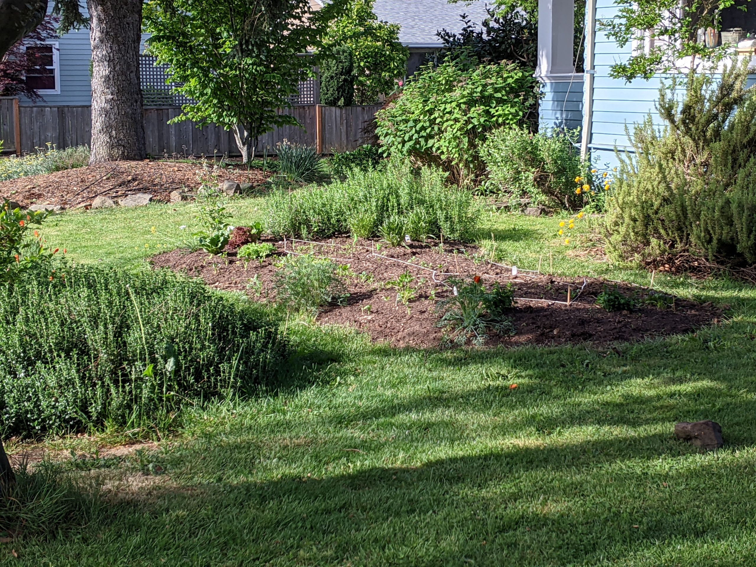 mounded earth garden bed surrounded by lawn